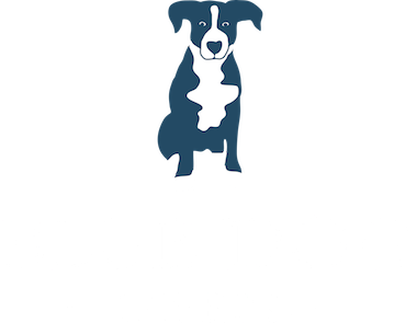 blue dog tavern_logo web home